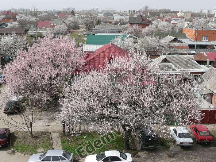 Частный сектор в Краснодаре весной